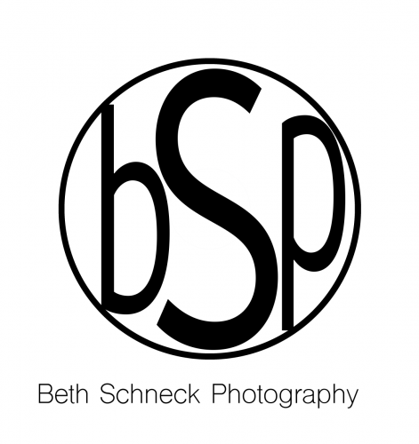 Logo BSP transparent white-bg